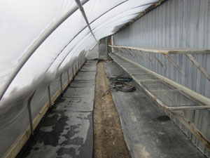 barn greenhouse cleaned and ready to load