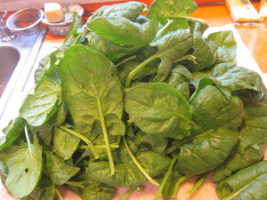 Fresh spinach from the garden.