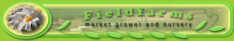 fieldfarms masthead